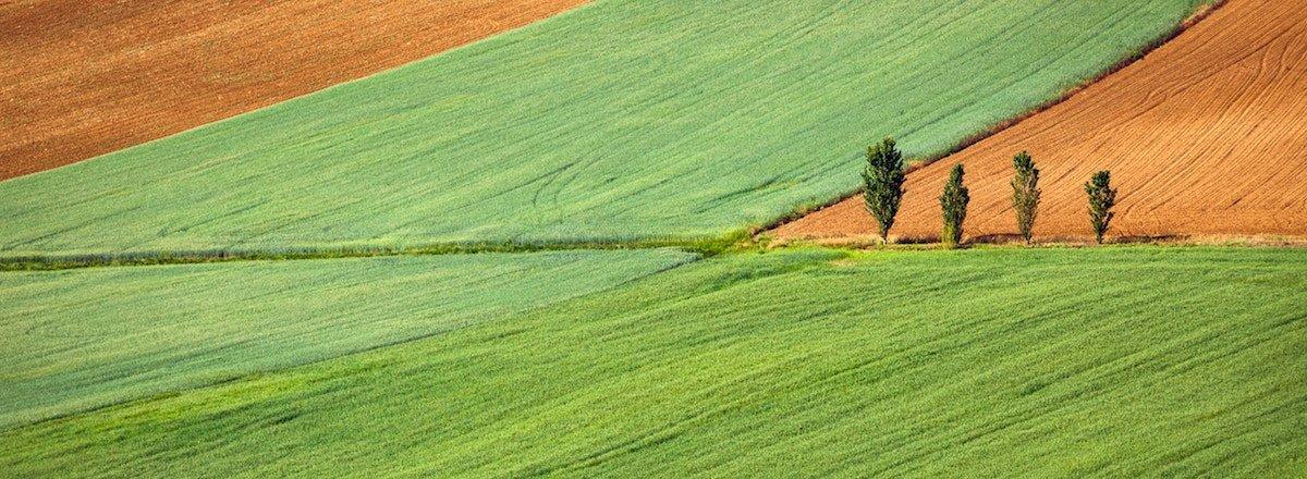 albacete_agricola-fitosanitarios