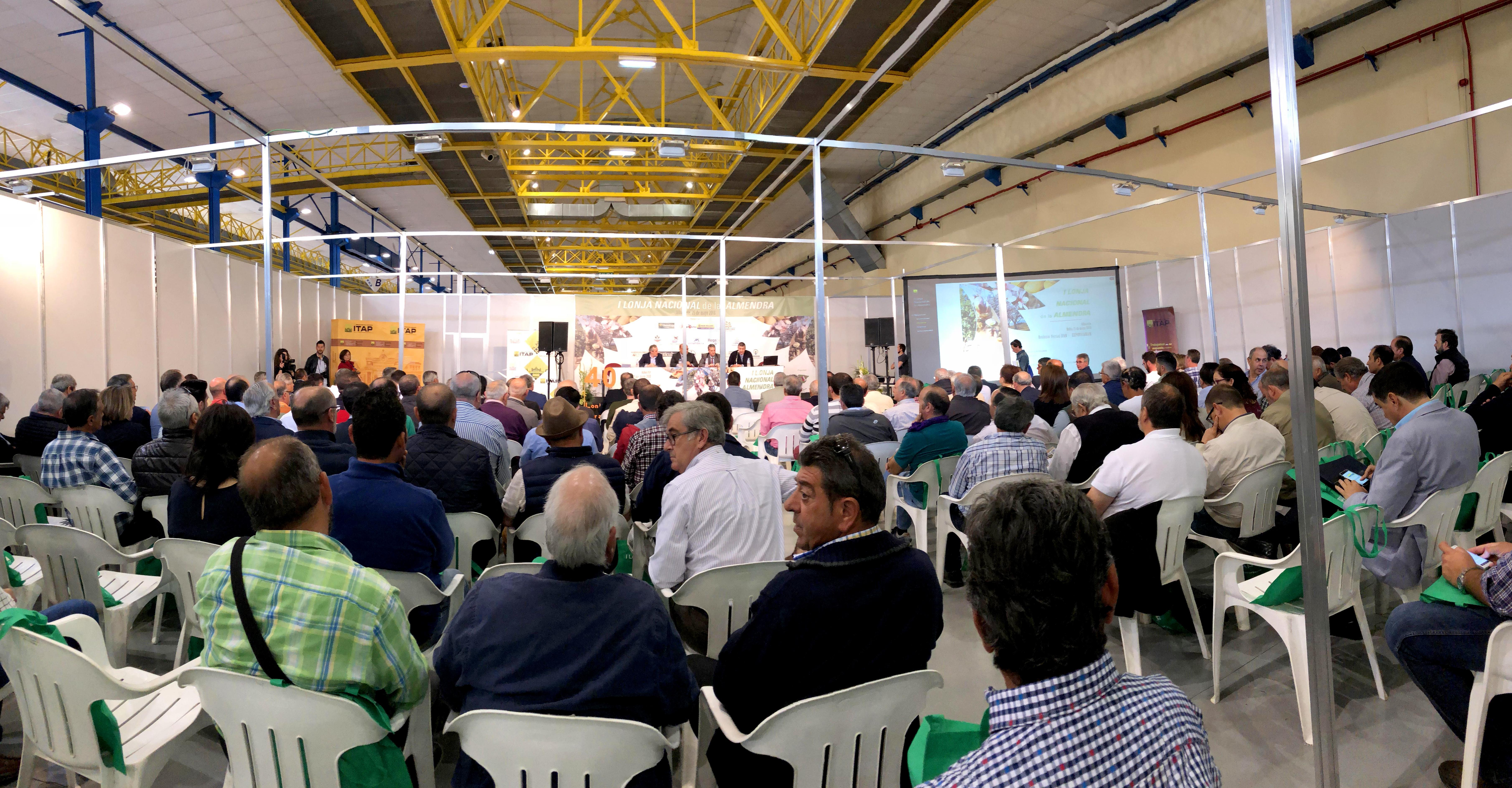 Almendra _ Albacete Agrícola